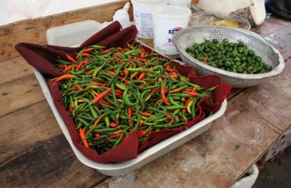 Vườn rau rộng tới 8000m² giữa thủ đô nước Mỹ của người phụ nữ Việt - Ảnh 11.